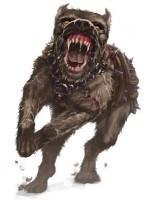 Krallen des Aikar Kampfhund