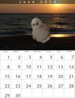 Sexy Heinz Kalender